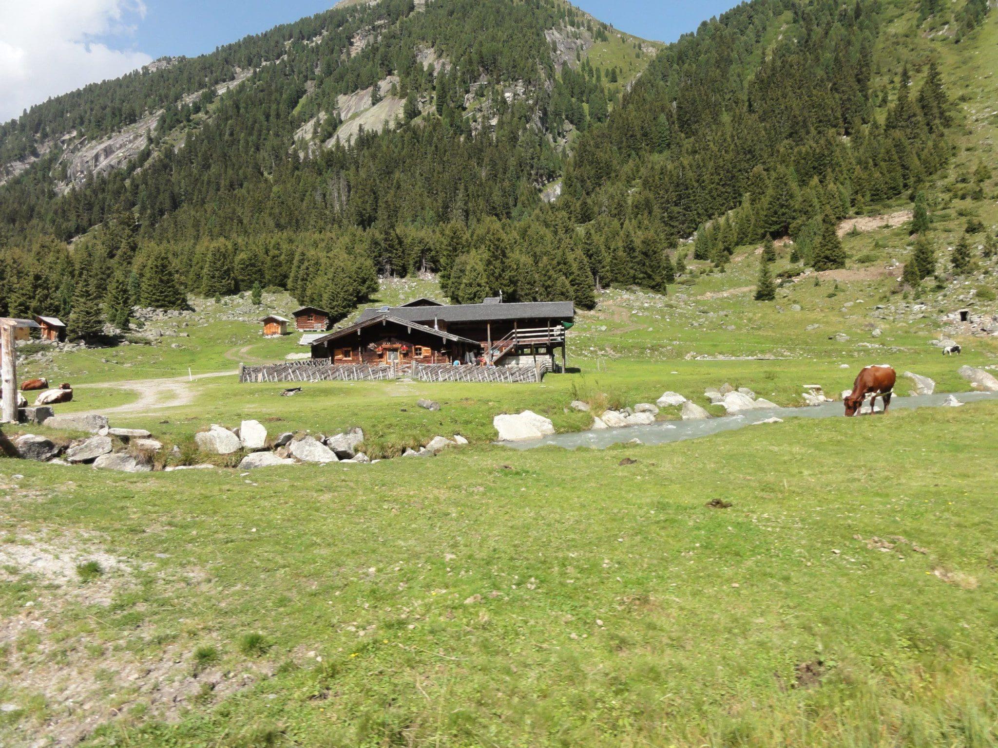 Krimml-Warnsdorfer-Hütte_3