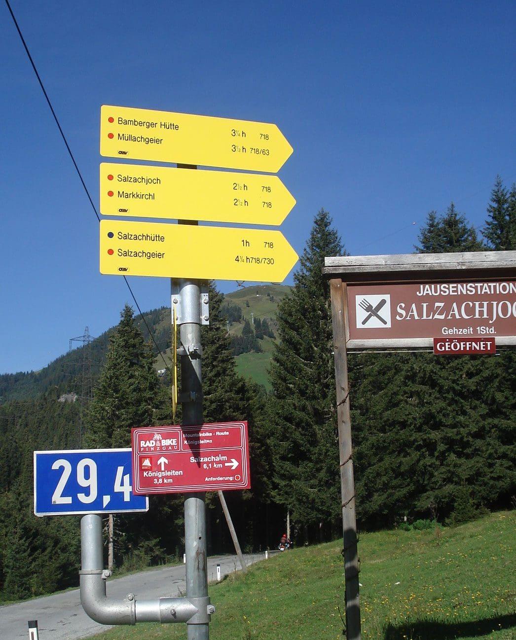 Salzachgeier_1