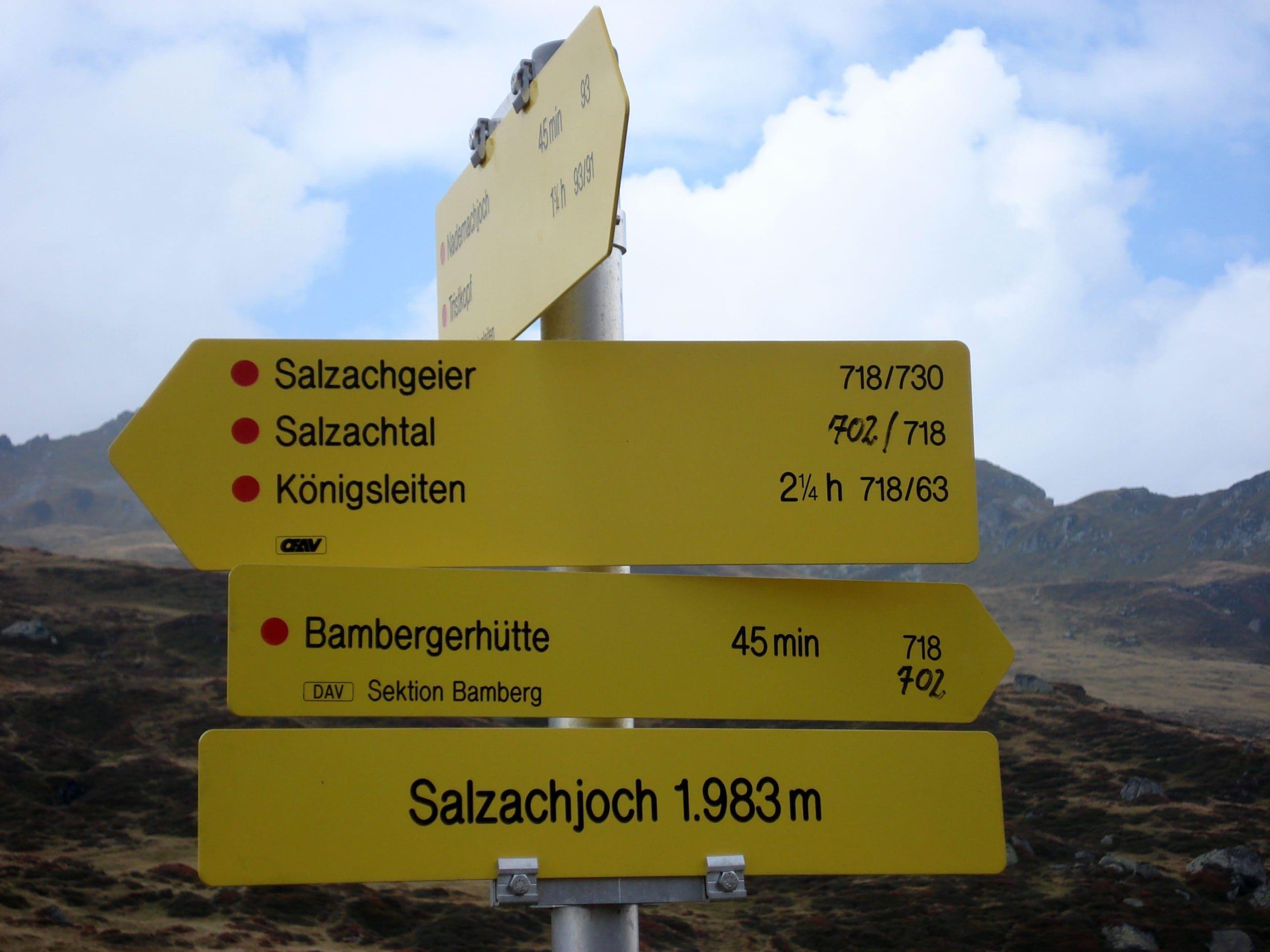Salzachgeier_3