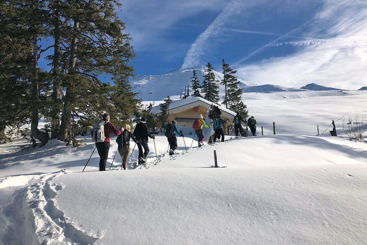 Schneeschuhwanderung - Aktivhotel in Österreich