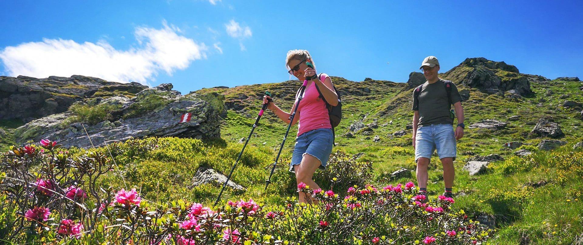 Wandern, Bergtouren in Bramberg, Wildkogel