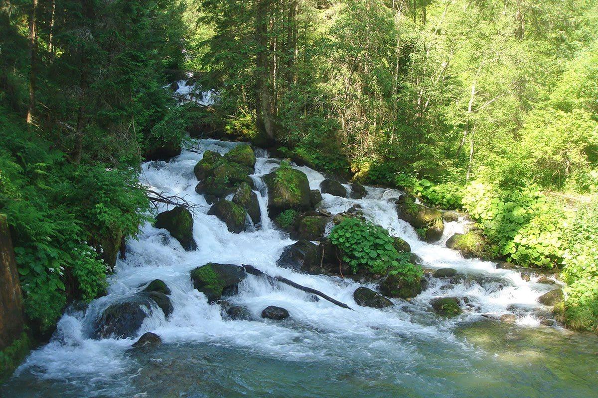 Wanderung Hollersbachtal 2